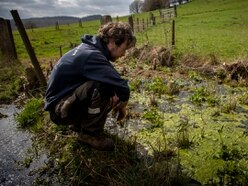 Shropshire farmer wants to build wetland to stop flooding downstream