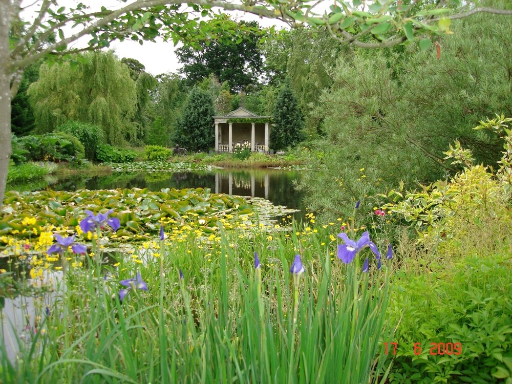 Blooming marvellous! Gardens opening for charity weekend ...