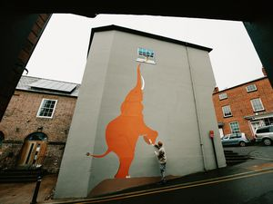 Bamber Hawes and his team painted the elephant onto the side of Bishop's Castle Town Hall