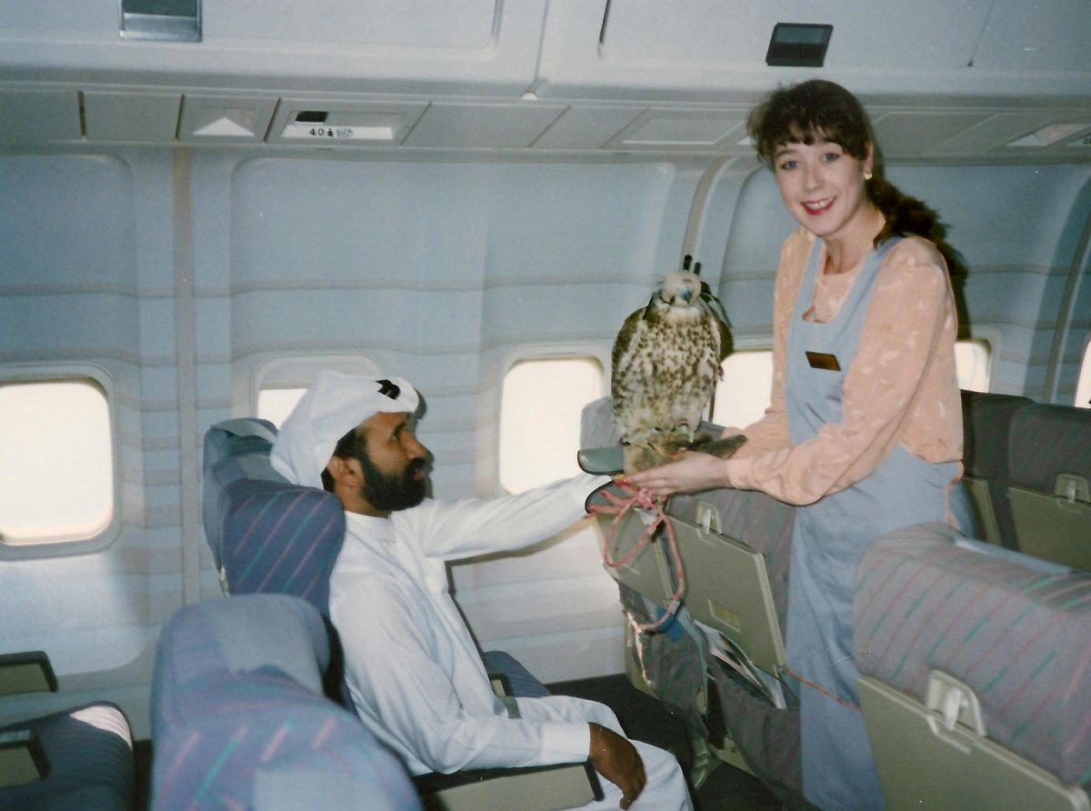 It was not unusual for Middle East passengers to carry falcons - and Angel was trained as a falcon handler.