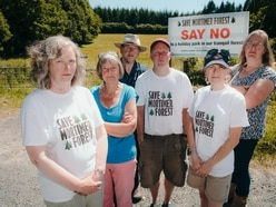 Minister calls probe into Mortimer Forest deal