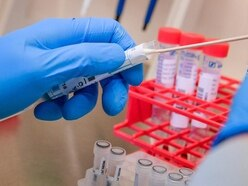 Scientists 'close to developing coronavirus vaccine after tests on mice'