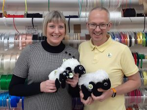 Husband and wife Adrienne and Dave Taylor with some of the sheep. Adrienne runs the Dabberhashery in Wellington market and Dave owns Saturday Cycles in the town.