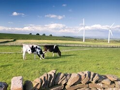 Protestors threaten council with legal action for allowing wind farm work