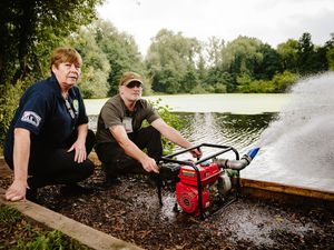 Telford Angling Association has been complaining about the state of the Dothill Pool and that the fish are dying due to the algae and lack of oxygen in the water