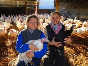 Proprietors Rachael Huxley and her daughter Rosanna Wadlow annually rear some 5,000 birds in the run-up to Christmas