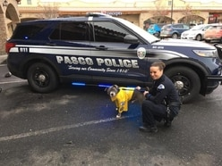 Dog with terminal cancer made honorary police K-9 for a day