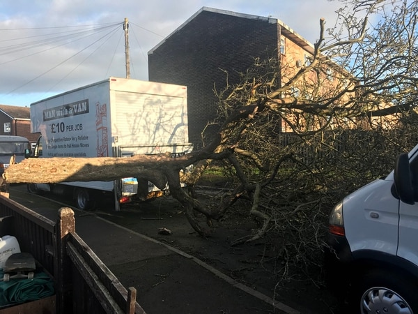 Trees down, roads closed and rail services hit as high winds hit Shropshire and Mid Wales - with video