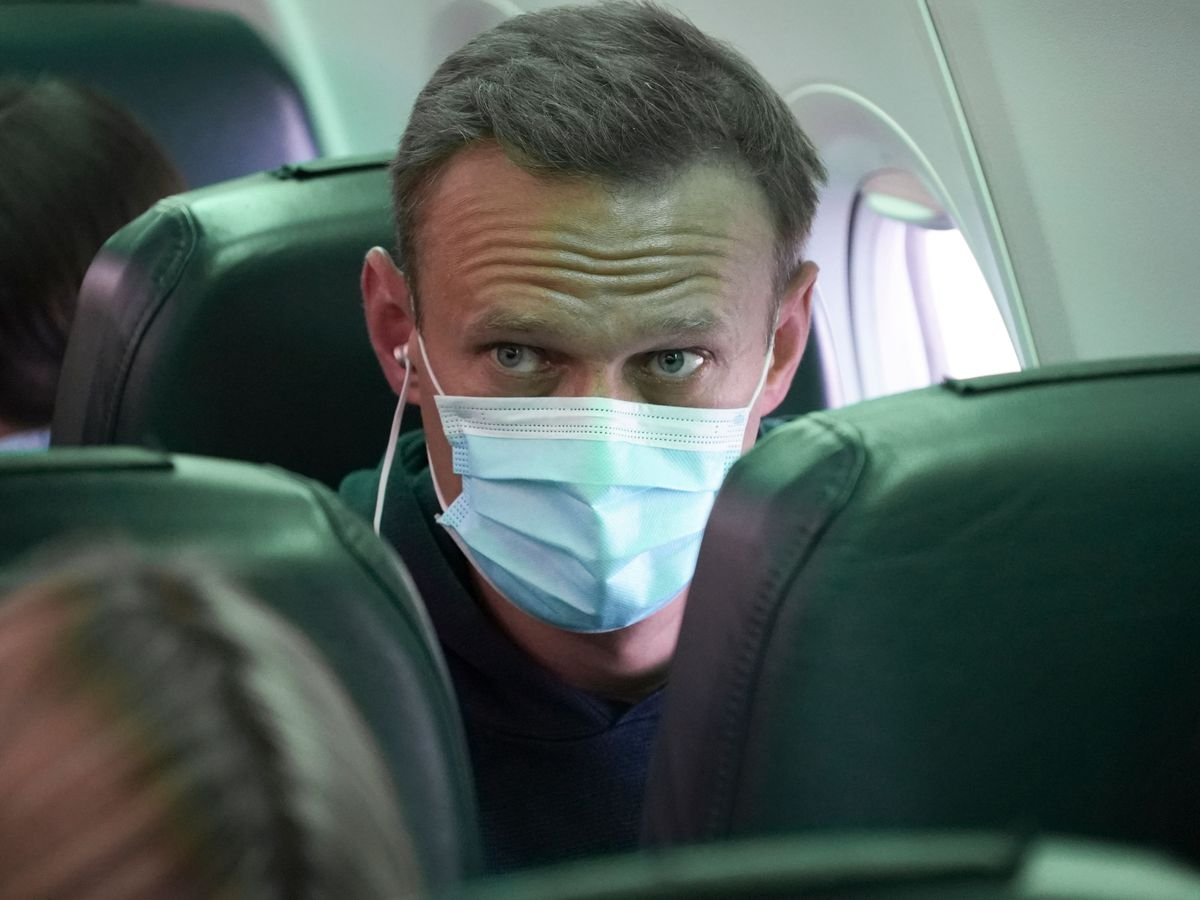 Alexei Navalny sits on the plane prior to a flight to Moscow