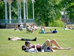 Google data shows county residents spending more time in parks