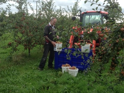 Harvesting the fruits of their labours
