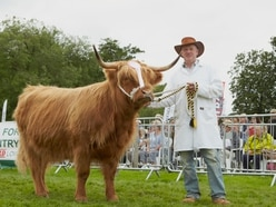 Burwarton Show: Annual event attracts crowds - with updates from the event