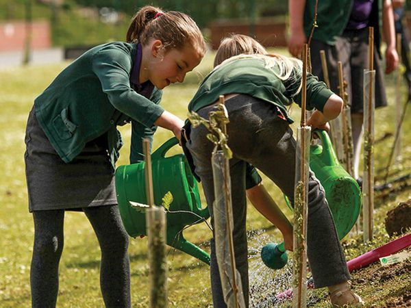 The Tree Appeal aims to support school communities throughout the UK, as well as forest regeneration projects in Kenya