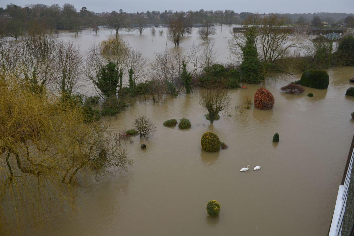 Flooded gardens on the corner of Berwick Road and Gravel Hill Lane, Shrewsbury