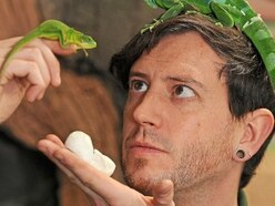 Egg-citing time at Telford's Exotic Zoo