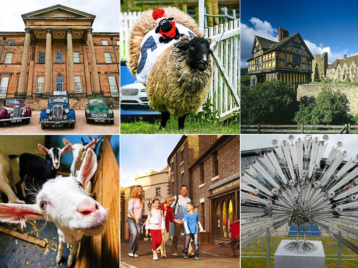 Days out galore in Shropshire and Mid Wales