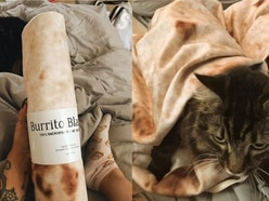 Social media has gone wild for this blanket that looks like a giant tortilla