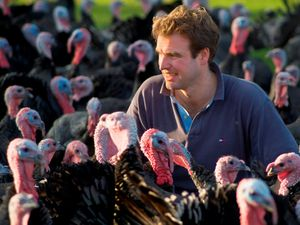 Farms continue to face shortage of seasonal labour