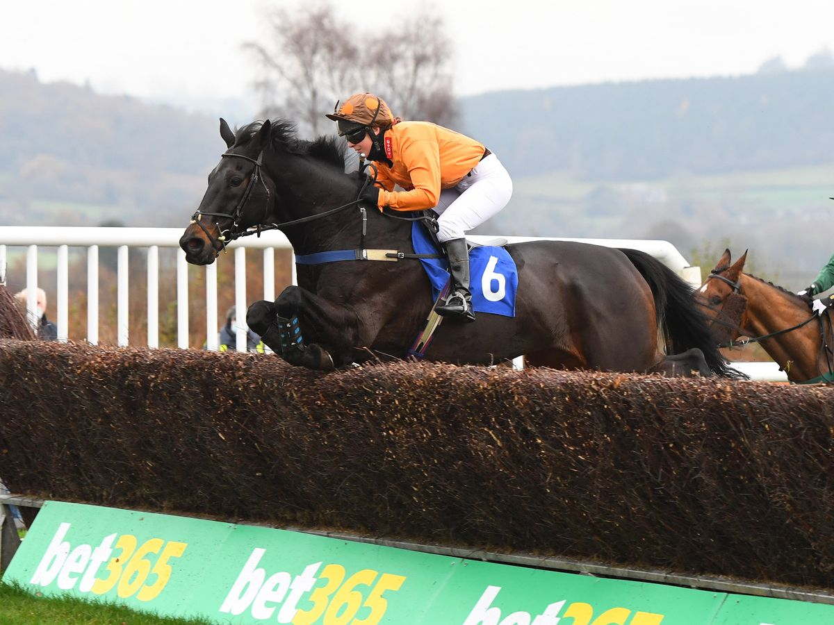 A celebration of the life of Lorna Brooke will take place at Ludlow Racecourse