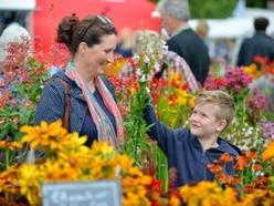 GALLERY: Showers fail to dampen spirits at Shrewsbury Flower Show