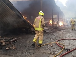 Cows are led to safety in barn blaze
