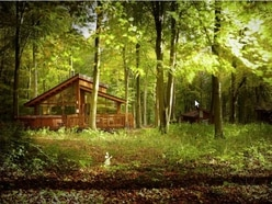 Joy as cabins plan for Shropshire border woodland is axed