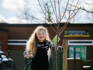 "LAST COPYRIGHT SHROPSHIRE STAR JAMIE RICKETTS 27/02/2021 - Lara Neal 10 has helped plant her first tree as part of her ""Tree Town Bridgnorth"" project, at her school, St Johns Catholic Primary School in Bridgnorth. She had some help from her father, the school and the Mayor. In Picture L>R: Lara Neal 10."