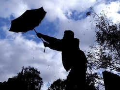 Trees down, roads closed and rail services hit as high winds hit Shropshire and Mid Wales