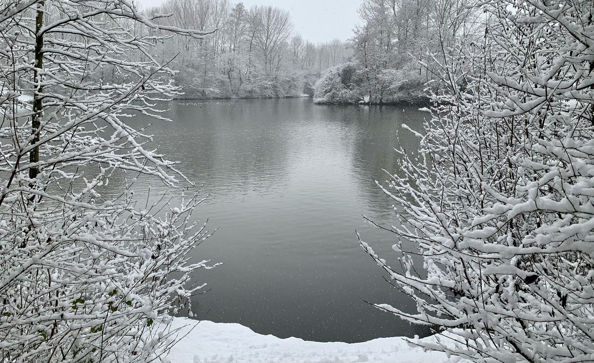 Snow at Middle Pool in Trench/Oakengates. Photo: Lisa Bethell