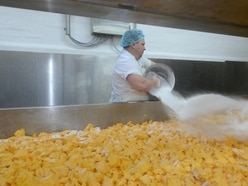 Cheesy does it, behind the scenes at Belton Farm