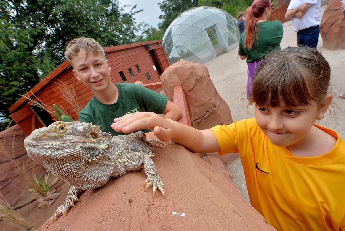 Amilie Hudd, 10, and Max Marshall with bearded dragon Arthur