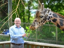 Virus blows a hole in zoo's investment plans