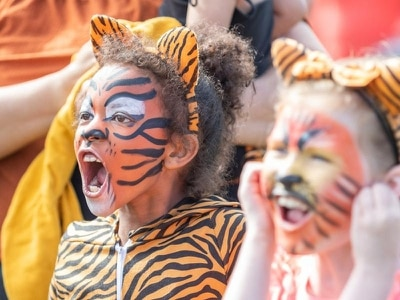 Roaring success of Knowsley tiger parade
