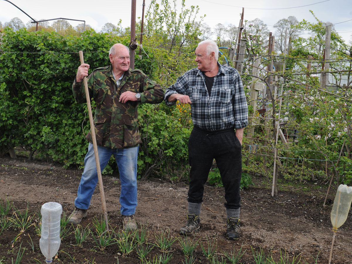 Elbow bump for Brian Huckfield, left, and Ed Howell at Castlefields Allotments, Shrewsbury