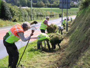 Volunteers clearing the verge