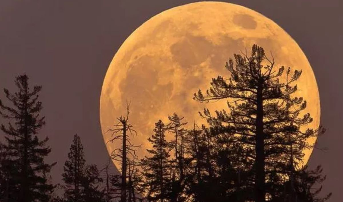 Get ready for a Supermoon towards the end of April. Picture: NASA.