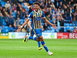 Sharp-shooter Lee Angol relaxed on eye-catching Shrewsbury Town form