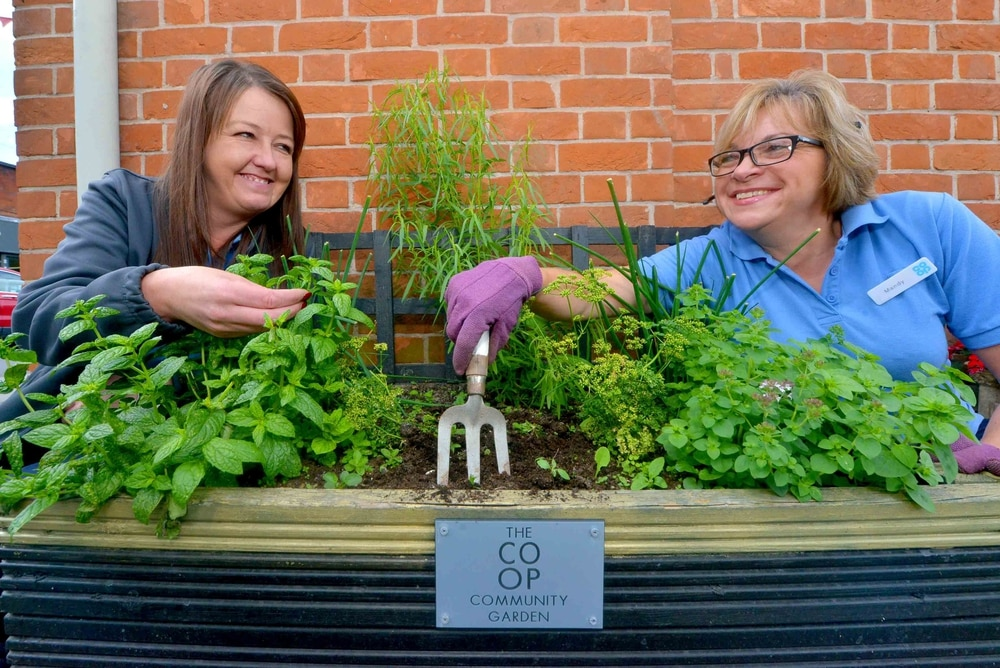 Community herb garden planted by the Co-op | Shropshire Star