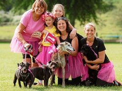 We're in the pink to help beat cancer: Thousands take part in Race For Life in Shrewsbury - with pictures and video