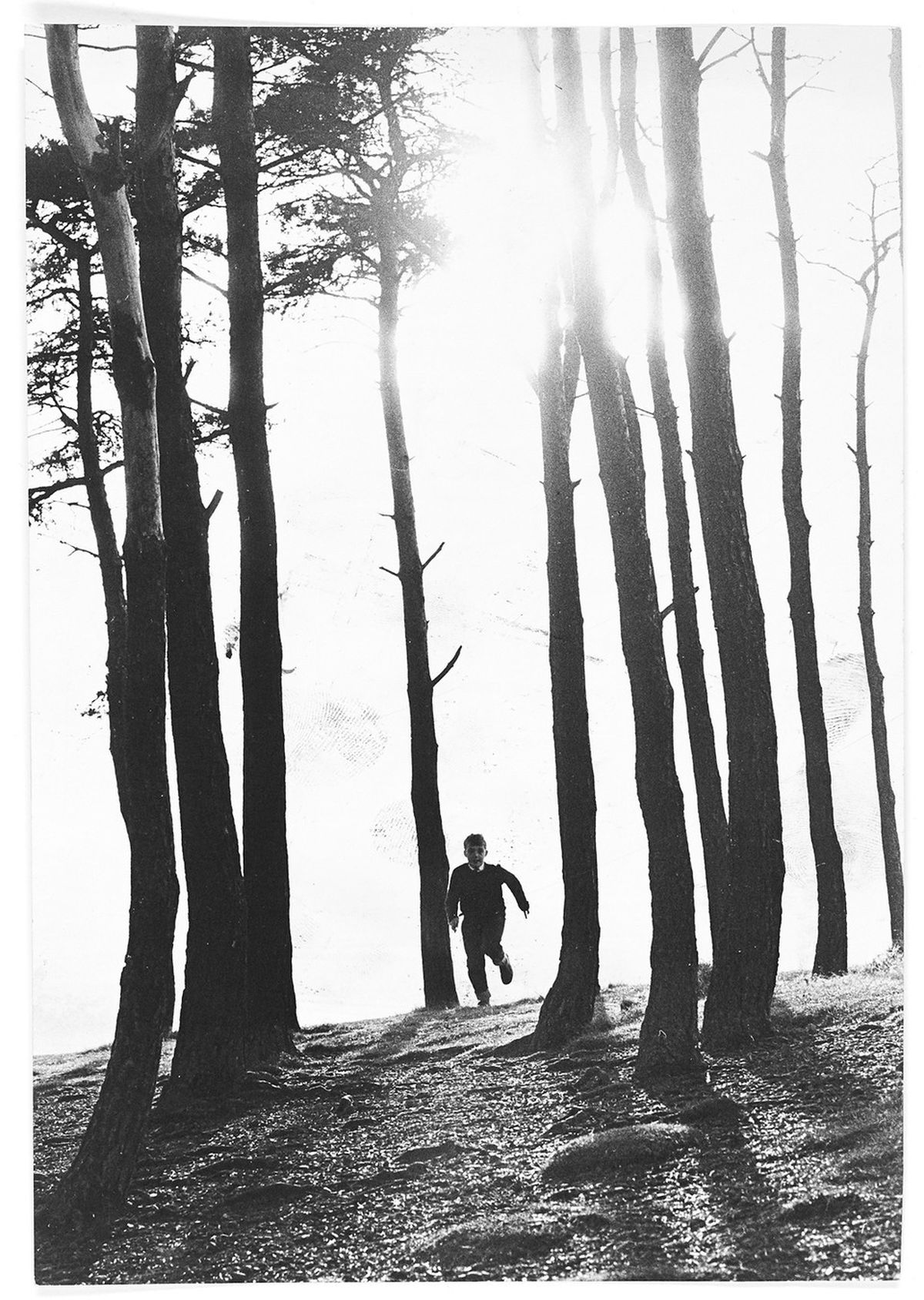 Boy running through trees in the Clent Hills