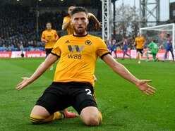 Crystal Palace 0 Wolves 1 – Report and pictures