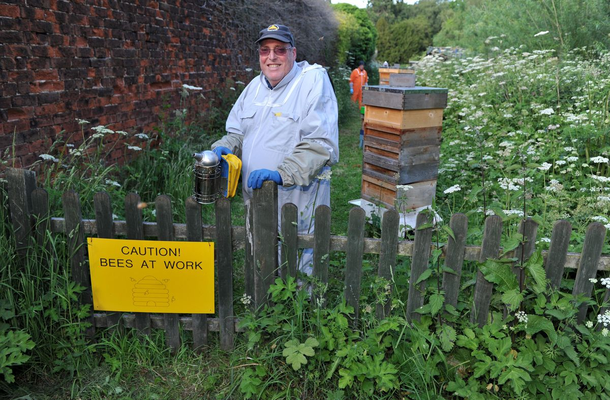 Alan in the apiary, which is within the grounds of Shugborough Hall