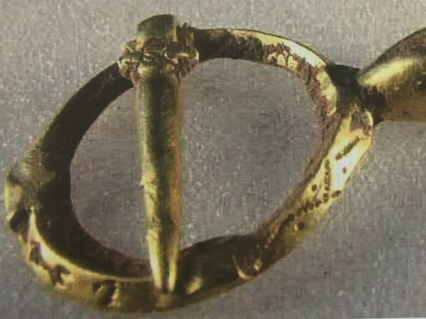 Medieval brooch found in Shropshire hills is declared treasure