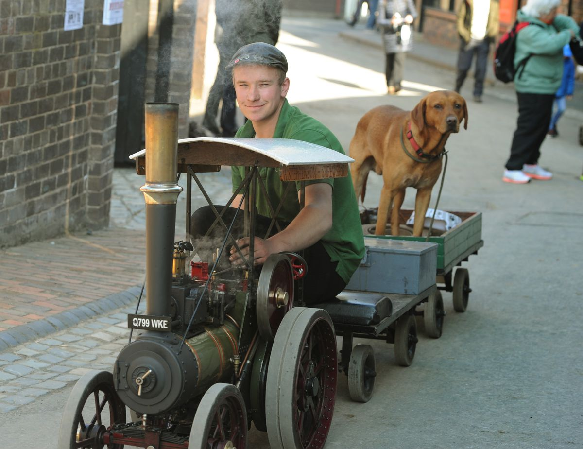 Mini traction engine ride for this dog