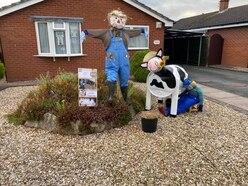Seven winners chosen in town's scarecrow festival