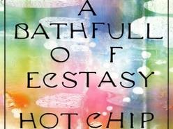 Hot Chip, A Bath Full Of Ecstasy - album review