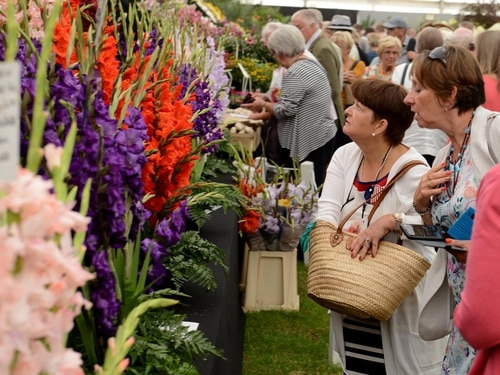 Shrewsbury Flower Show: Thousands flock to The Quarry on final day – with pictures and video
