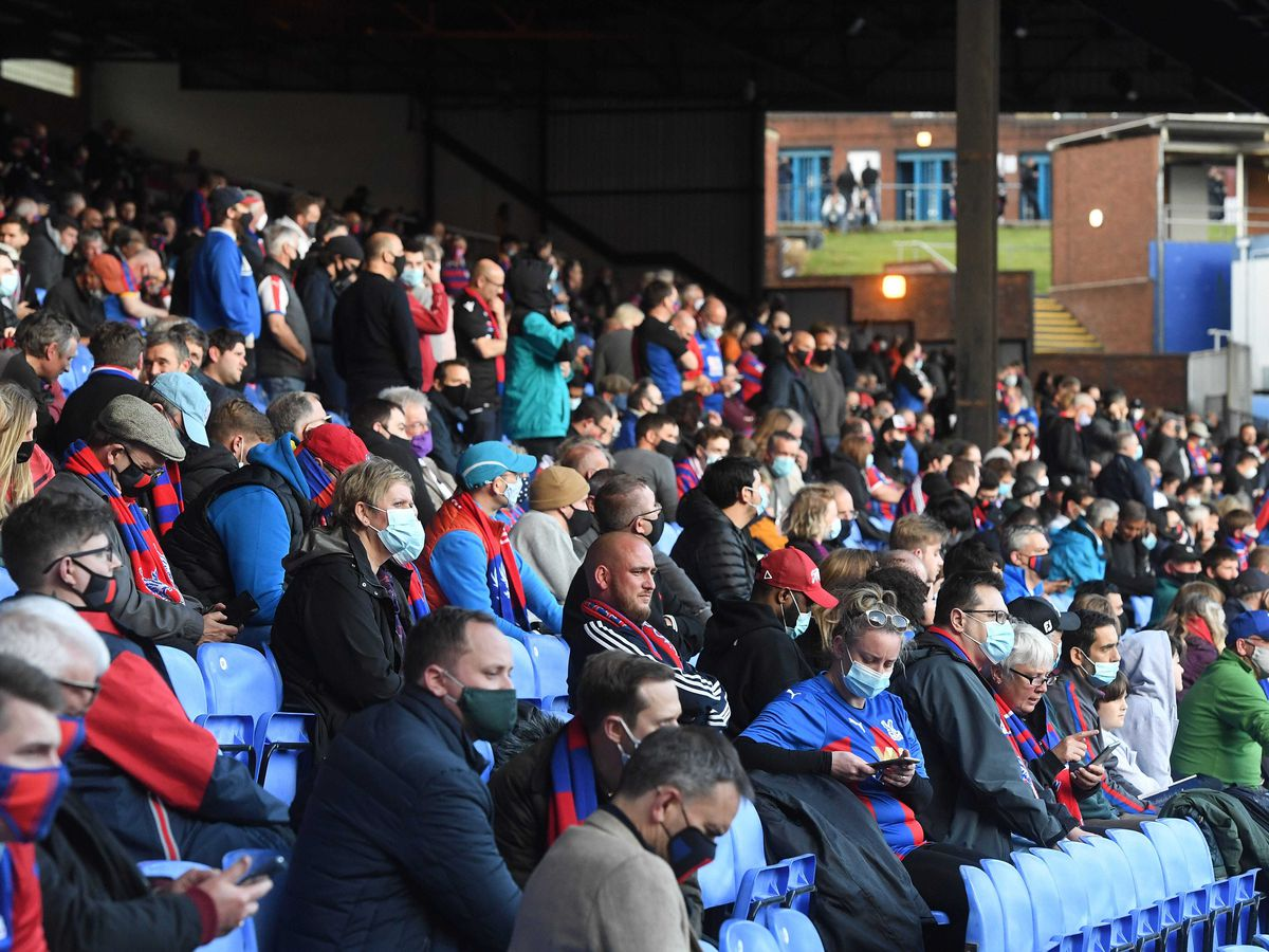 Crystal Palace fans in the stands