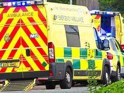 Woman seriously injured and dog killed as they are hit by car