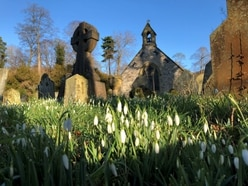 Snowdrop service at church near Llangollen
